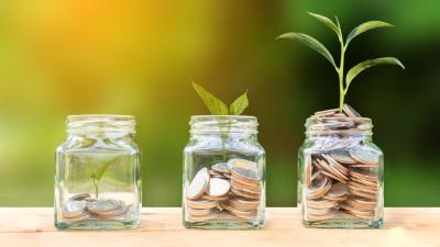 Investoren- und Verbraucherschutz